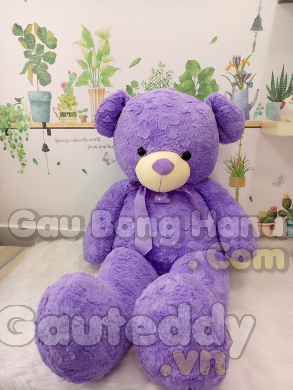 Gấu Teddy Purple Star