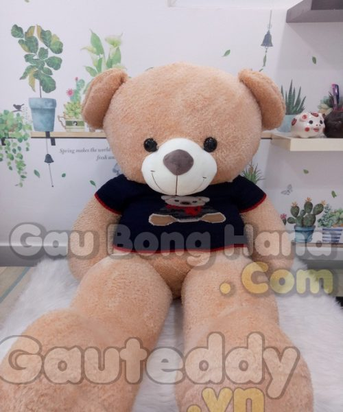 Gấu Teddy Lông Chỉ Áo Gấu