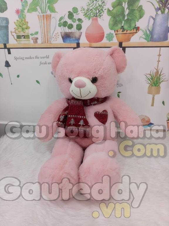 Gấu Teddy Shawls Hồng