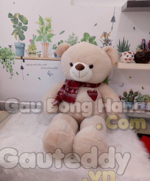 Gấu Teddy Shawls Trắng