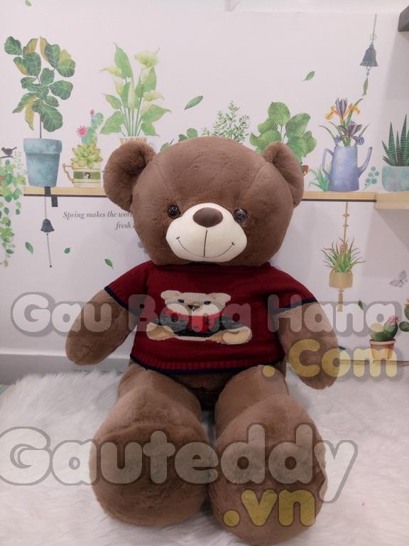 Gấu Teddy Áo Gấu Nâu