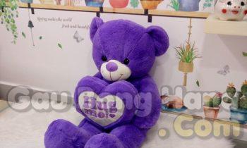 Gấu Teddy Purple Hug Me