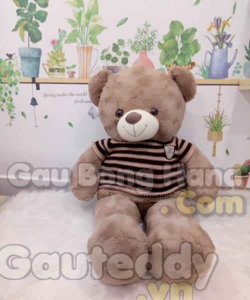 Gấu Teddy Mine