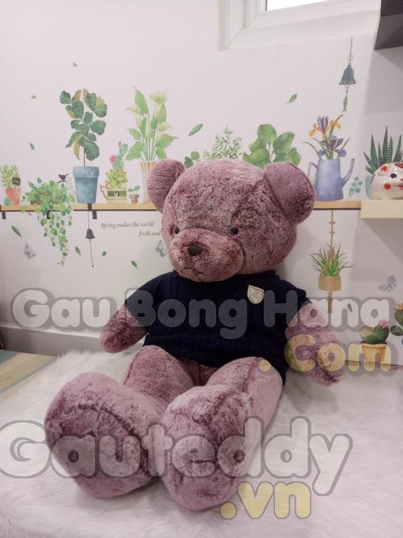 Gấu Teddy Snowflake