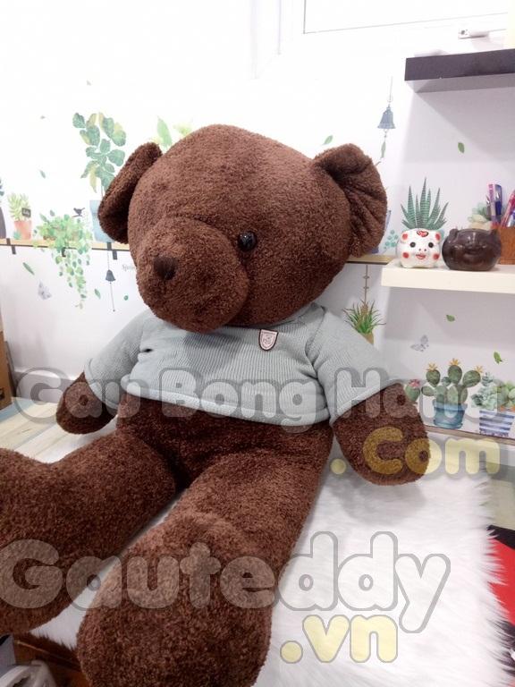 Gấu Teddy Pub Nâu