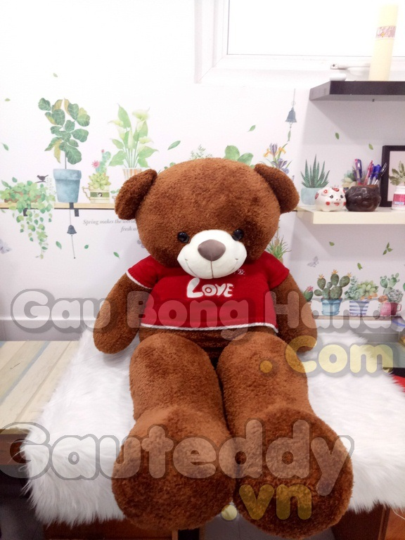 Gấu Teddy Lông Chỉ Áo LOVE