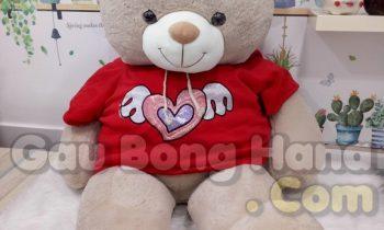 Gấu Teddy Wings Nâu