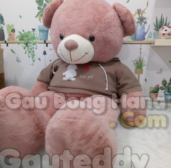 Gấu Teddy Bunny