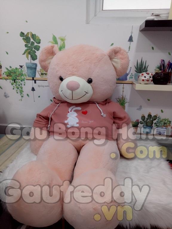 Gấu Teddy Bunny Hồng