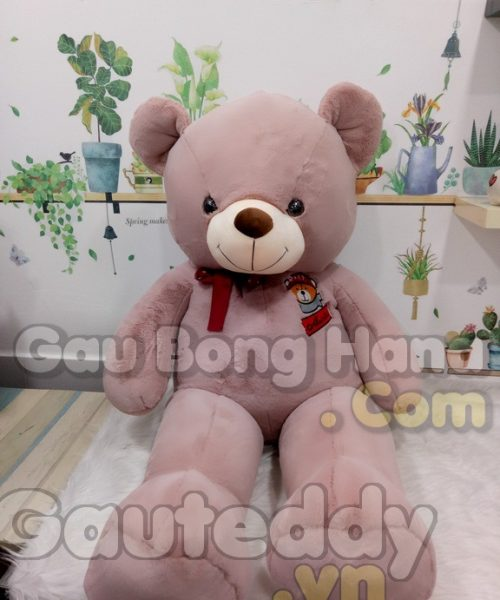Gấu Teddy GEM S