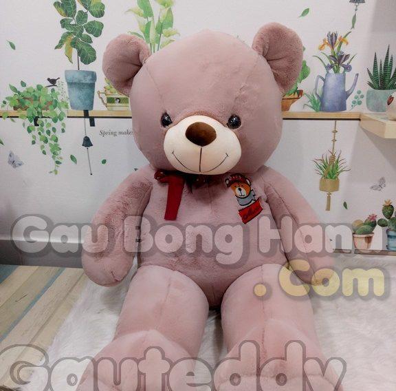 Gấu Teddy GEM S