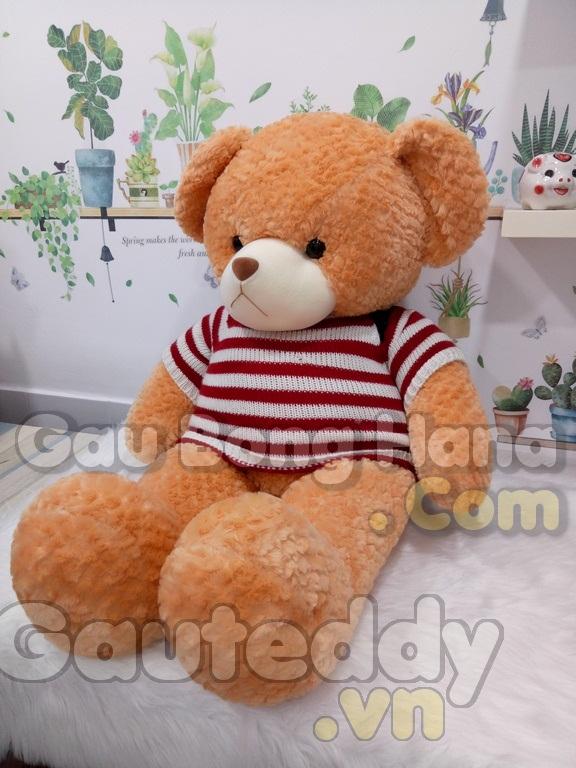 Gấu Bông Alone