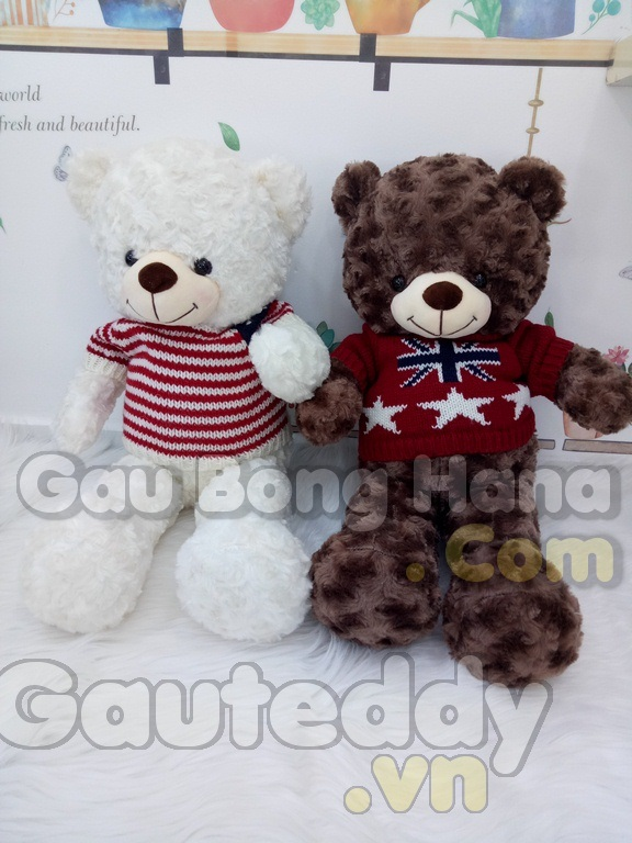 Gấu Teddy Melody