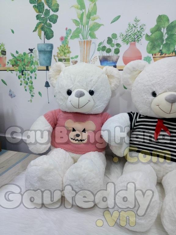 Gấu Teddy Loving U Áo Sọc