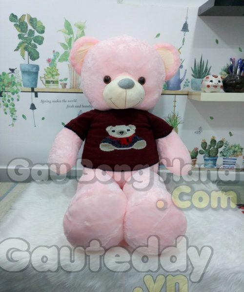 Gấu Teddy Pink Áo Gấu