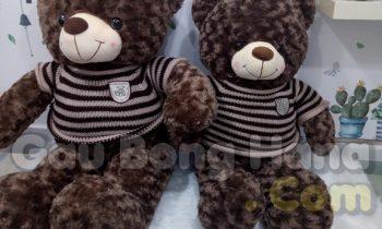 Gấu Bông Teddy Má Hồng