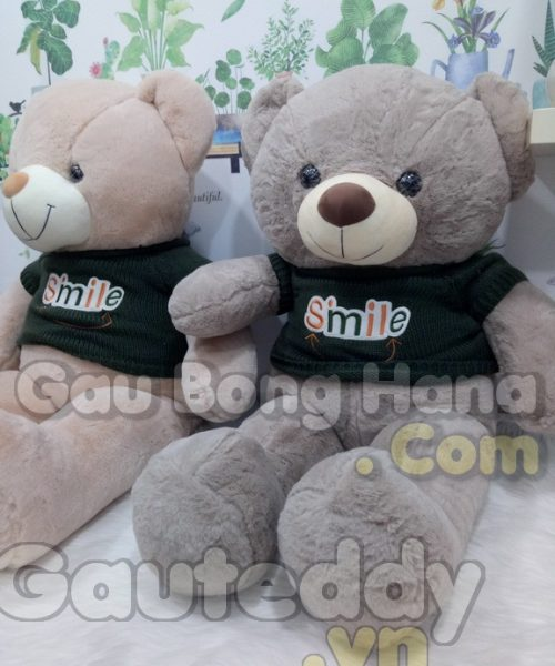 Gấu Teddy Smile