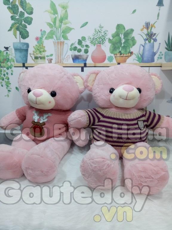 Gấu Teddy Candy Hồng