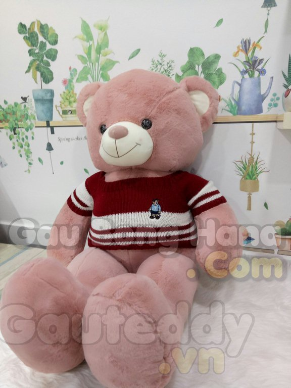 Gấu Teddy Sun Áo Đỏ
