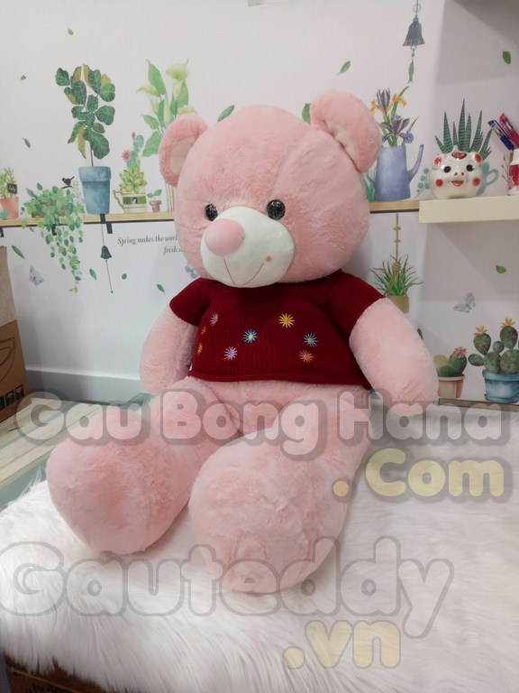 Gấu Teddy Floweret