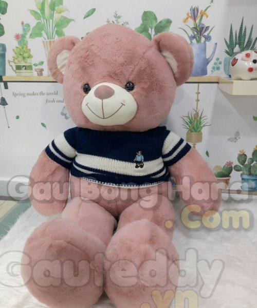 Gấu Teddy Sun Áo Xanh