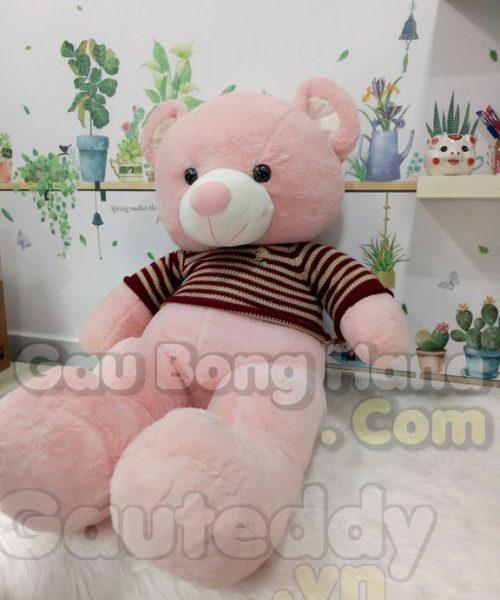 Gấu Teddy Floweret Sọc Đỏ