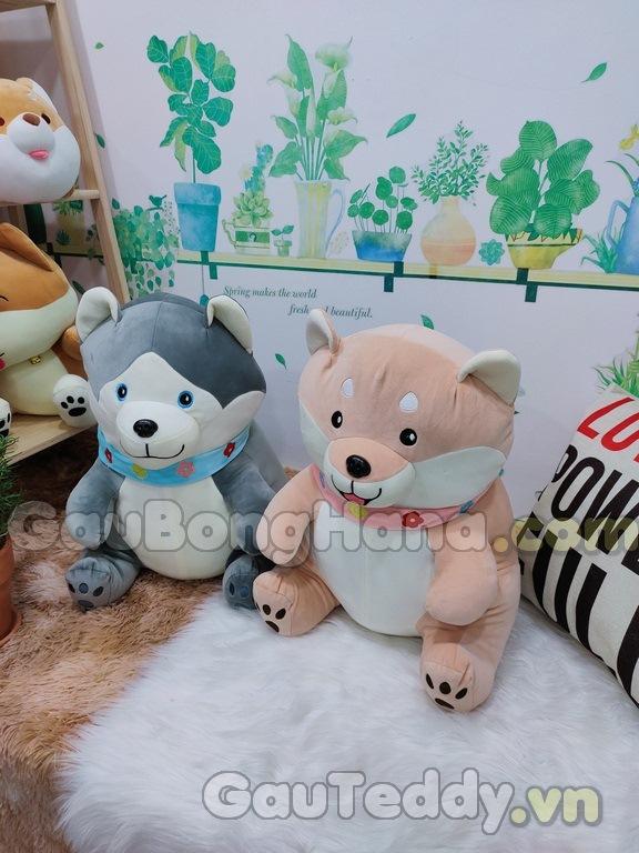 Chó Bông Shiba Ngồi