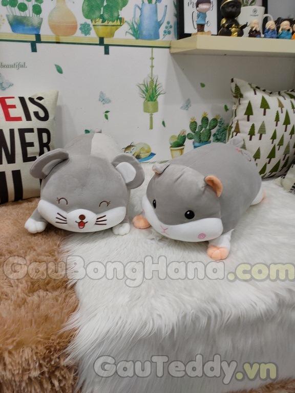 Chuột Hamster Bông