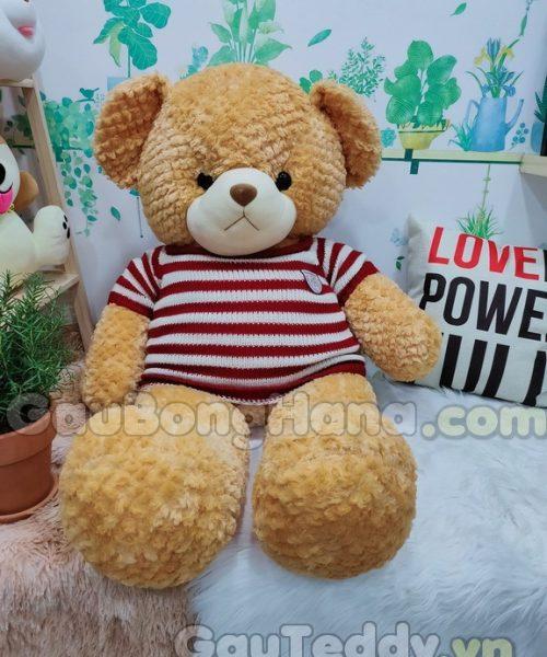 Gấu Bông Teddy Alone