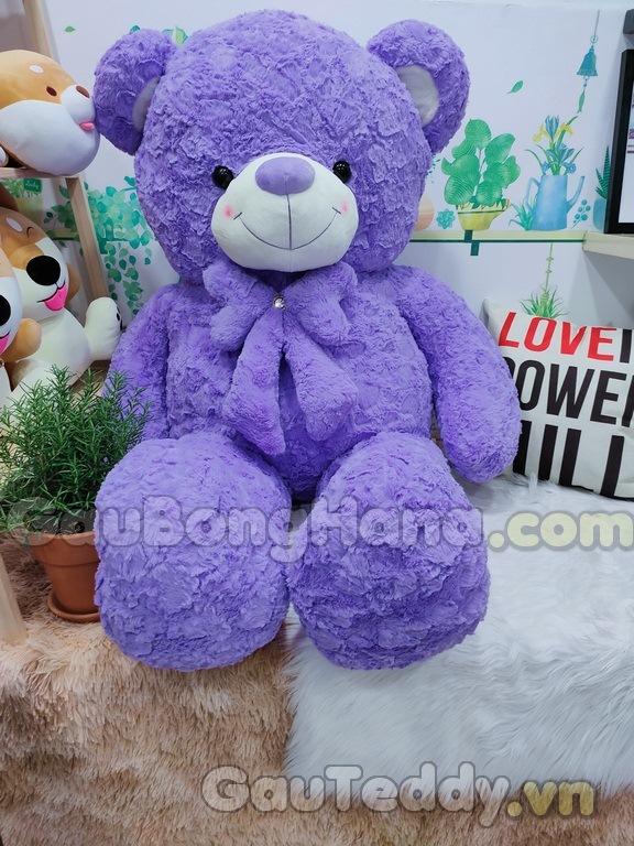Gấu Bông Teddy Purple