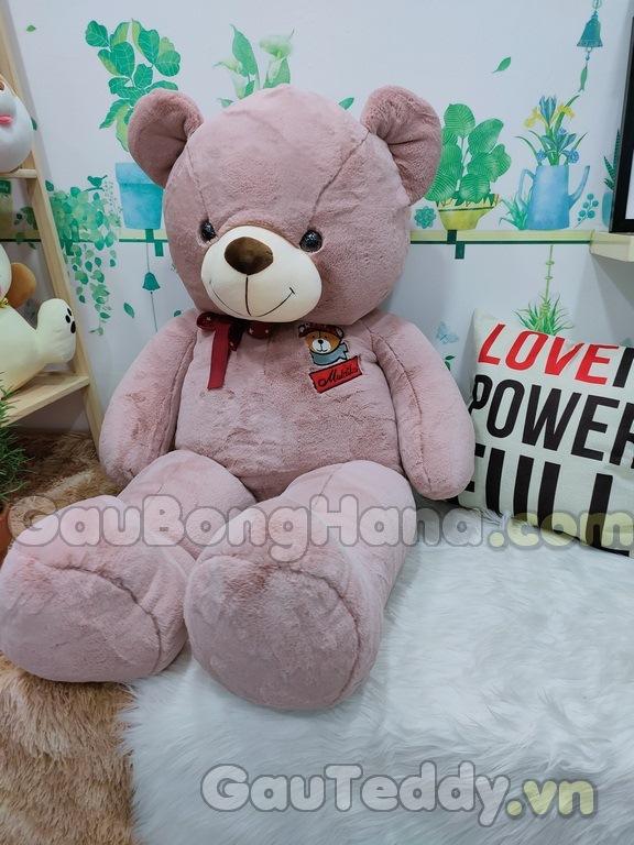 Gấu Bông Teddy GEM S