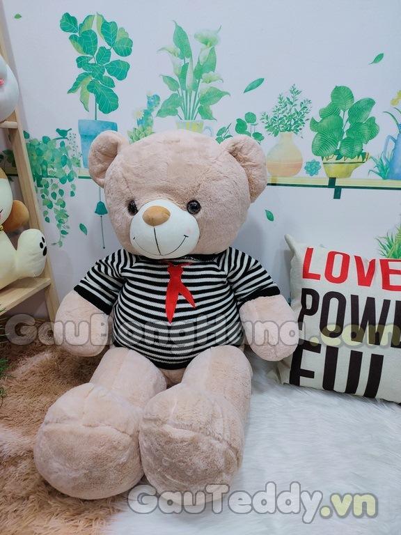 Gấu Teddy Áo Sọc Đen