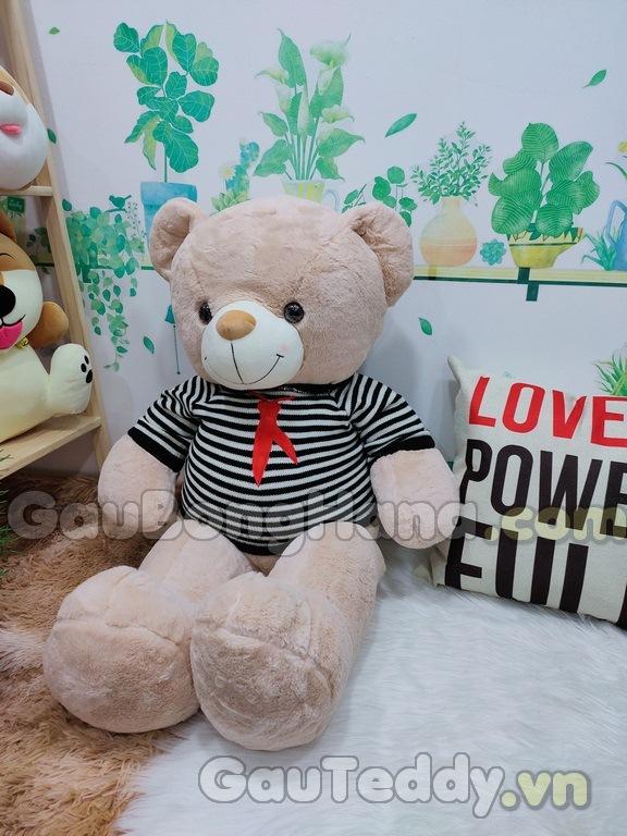 Gấu Bông Áo Sọc Đen