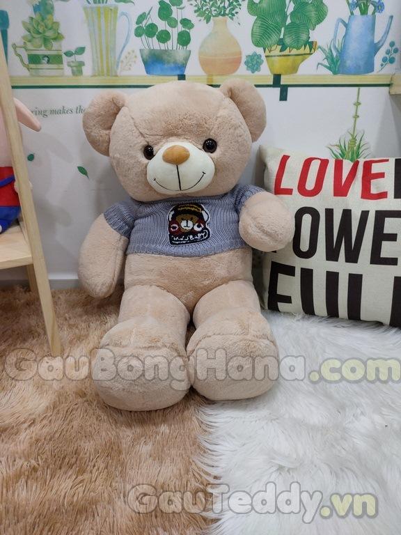 Gấu Bông Áo Gấu
