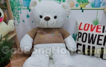Gấu Bông Teddy Áo Hoa