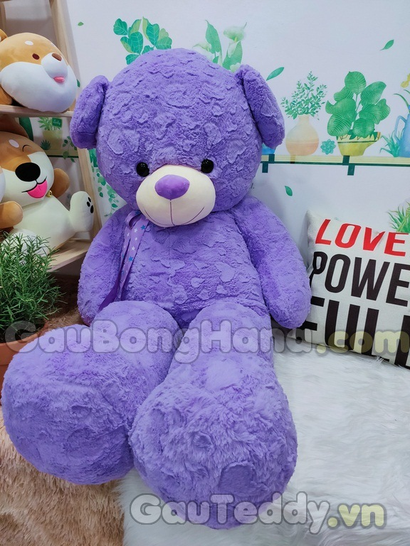 Teddy Purple Star