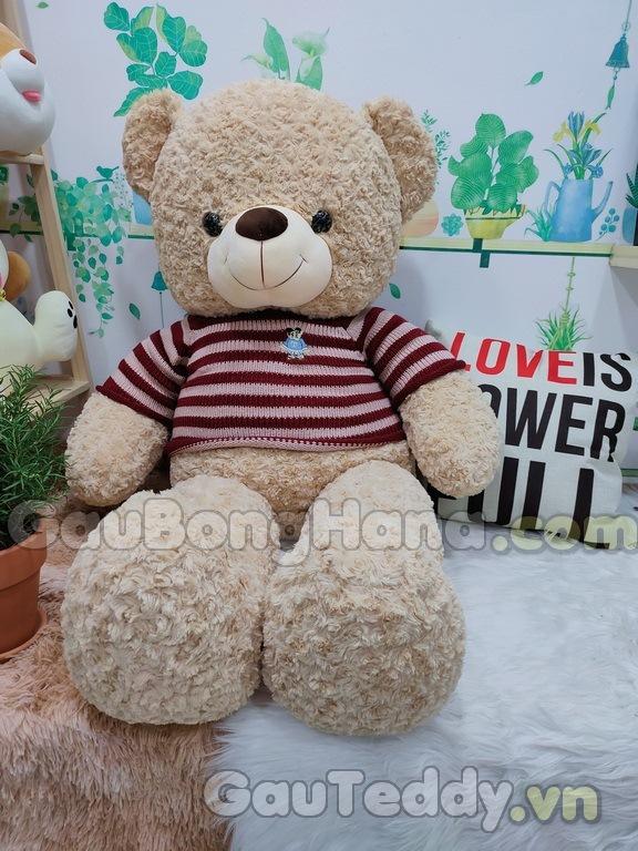 Gấu Bông Teddy Choco