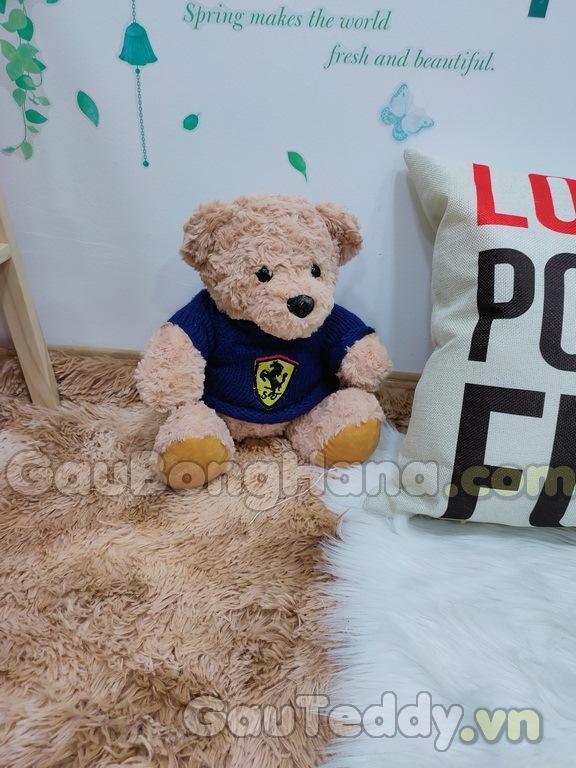 Gấu Teddy Logo Xe