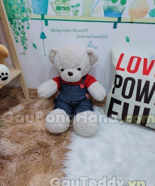 Gấu Bông Jeen