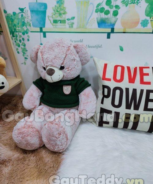 Gấu Teddy Dulcie