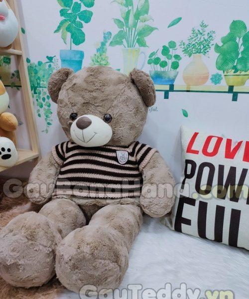 Gấu Bông Teddy Mine