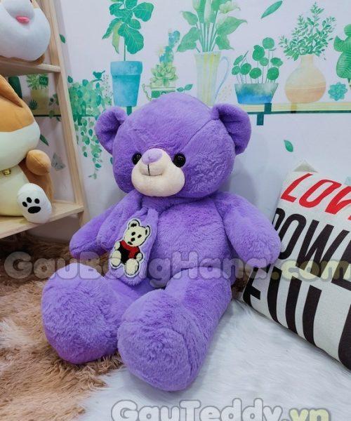 Teddy Khăn Choàng Tím