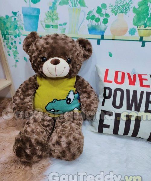 Gấu Teddy Áo Khủng Long