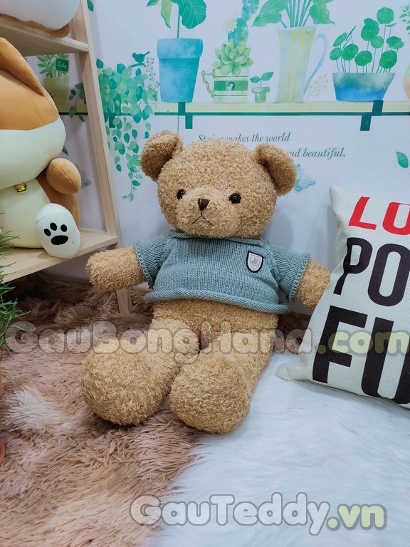 Gấu Teddy Pub Áo Xám