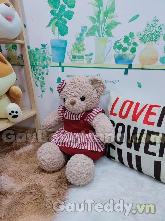Gấu Teddy Váy Nâu