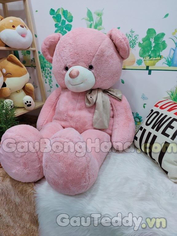 Gấu Teddy Freya