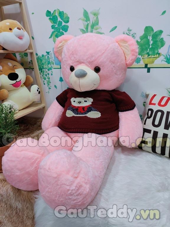 Teddy Pink Áo Gấu