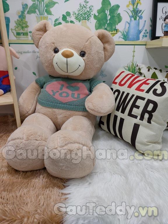 Gấu Teddy Mie Áo Xanh