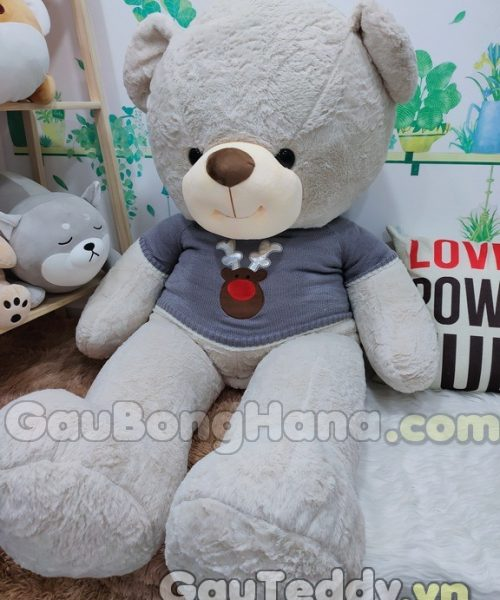 Gấu Bông Áo Xám