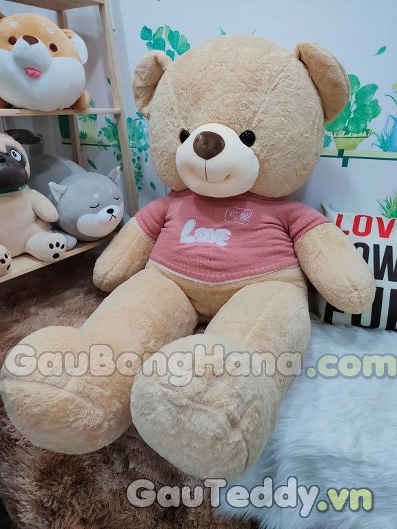 Gấu Bông Love Áo Hồng